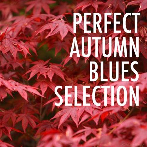 Perfect Autumn Blues Selection von Various Artists