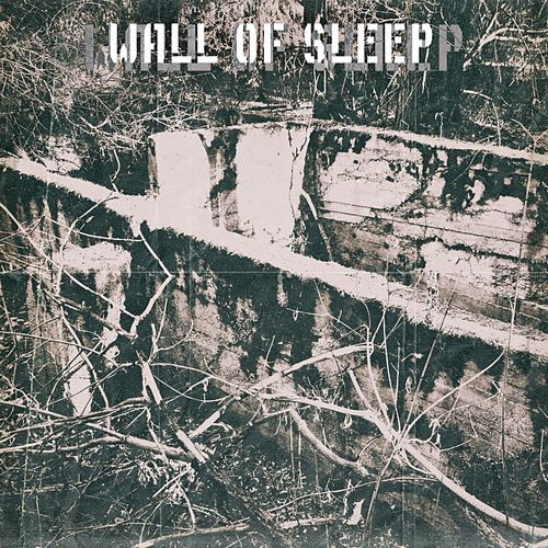 Wall of Sleep de Watchtower