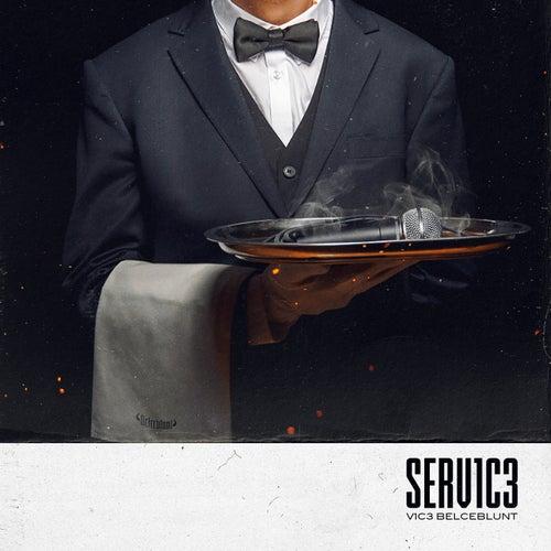 Serv1C3 von V1c3