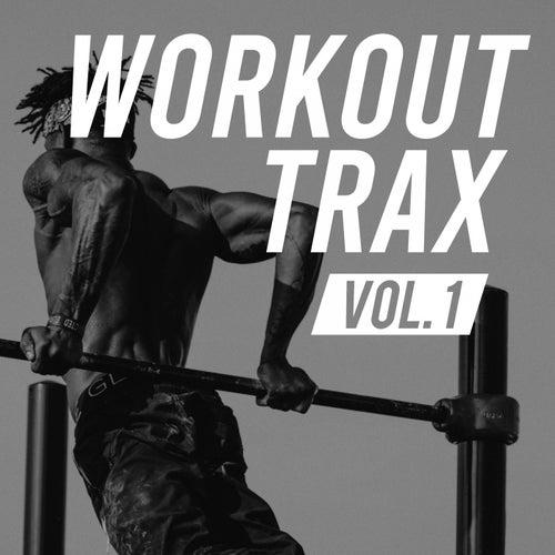 Workout Trax Volume. 1 de Various Artists