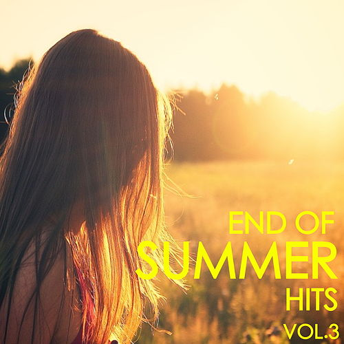End Of Summer Hits Vol.3 von Various Artists