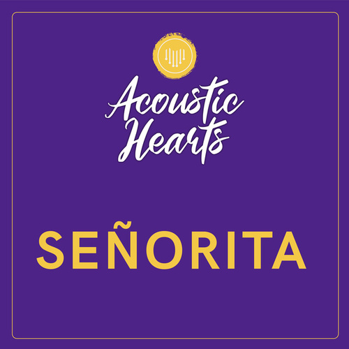 Señorita by Acoustic Hearts