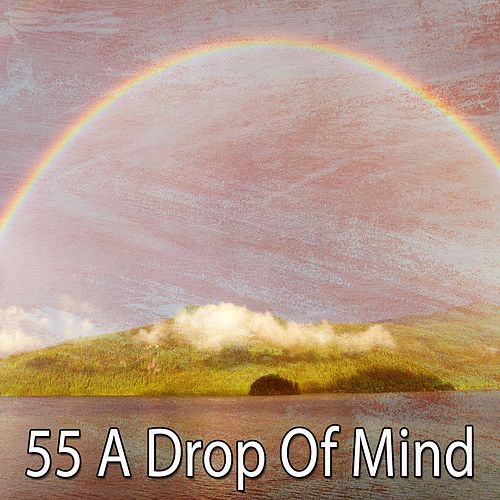 55 A Drop of Mind by Asian Traditional Music