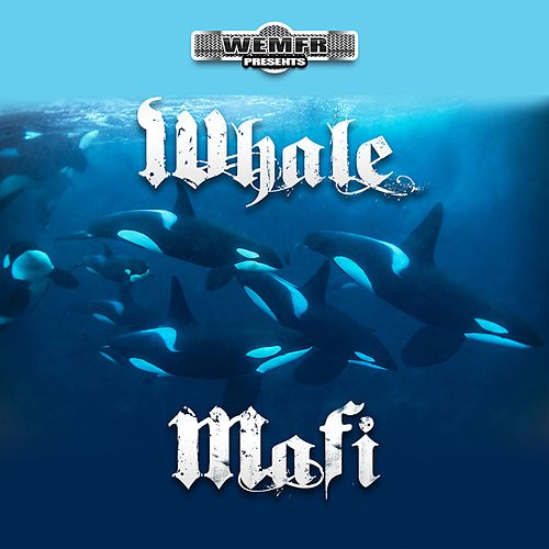 Whale Mafi von Rich The Factor