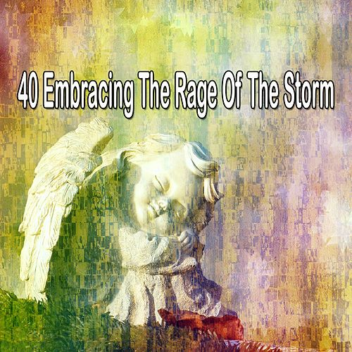 40 Embracing the Rage of the Storm by Rain Sounds and White Noise