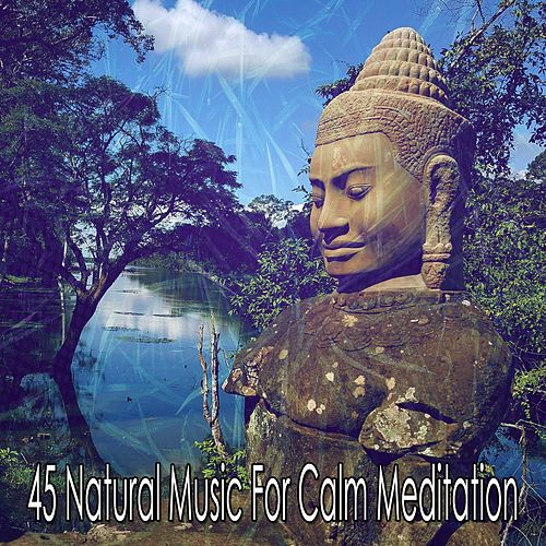 45 Natural Music for Calm Meditation by Yoga Music