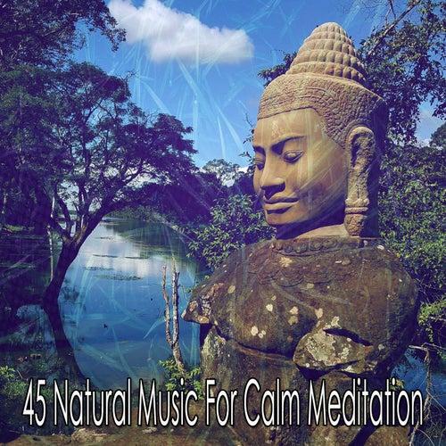 45 Natural Music for Calm Meditation von Yoga Music