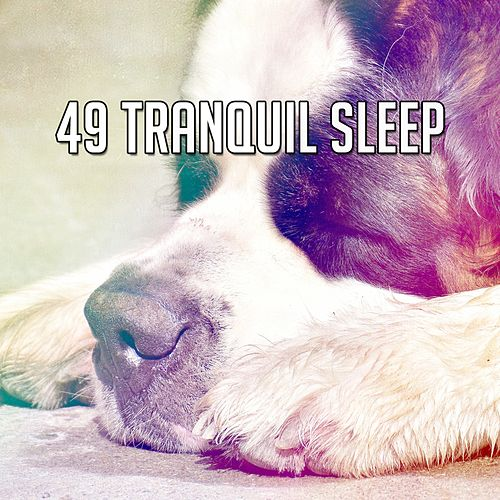 49 Tranquil Sleep de Ocean Sounds Collection (1)