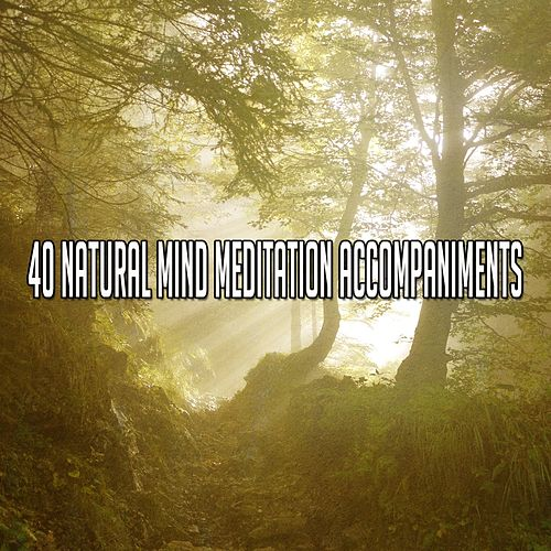 40 Natural Mind Meditation Accompaniments by Asian Traditional Music