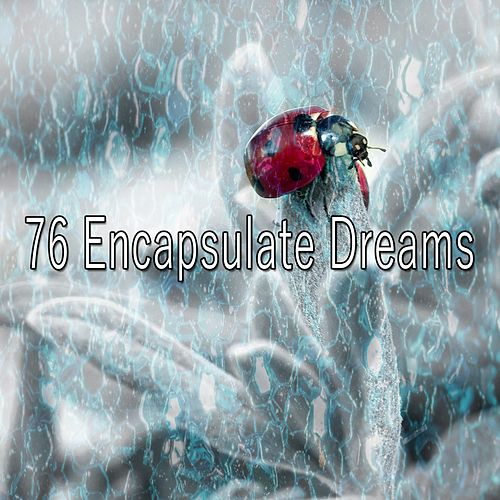 76 Encapsulate Dreams de Lullaby Land