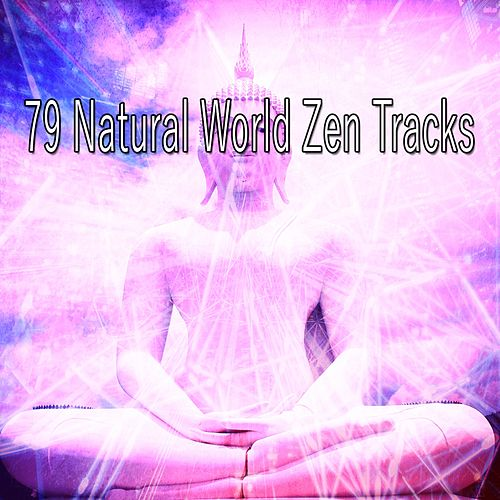 79 Natural World Zen Tracks di Lullabies for Deep Meditation