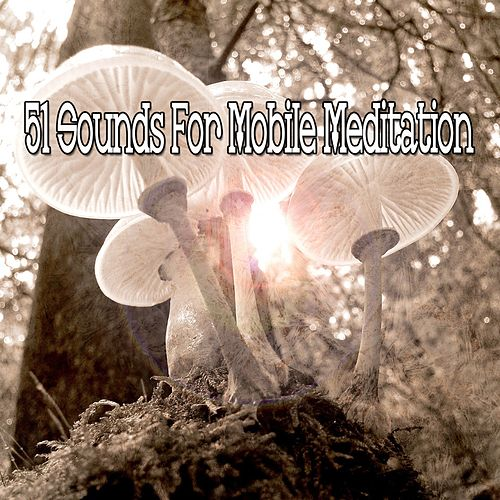 51 Sounds for Mobile Meditation by Yoga Tribe