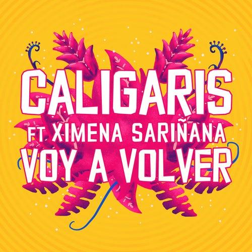 Voy a Volver de Los Caligaris