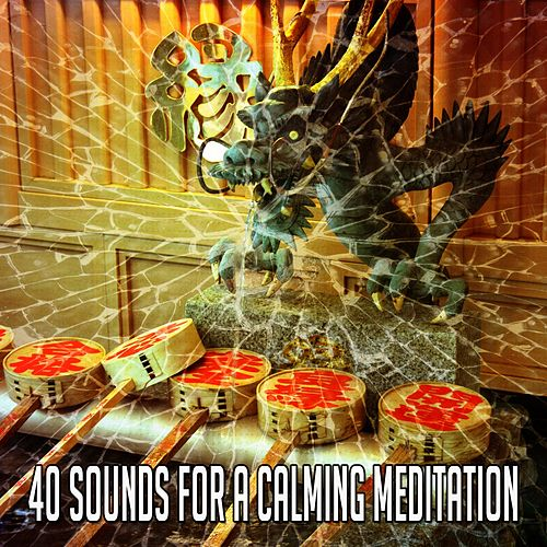 40 Sounds for a Calming Meditation by Zen Music Garden
