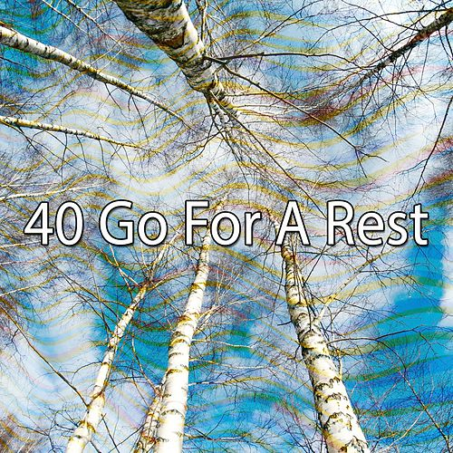 40 Go For a Rest de Smart Baby Lullaby