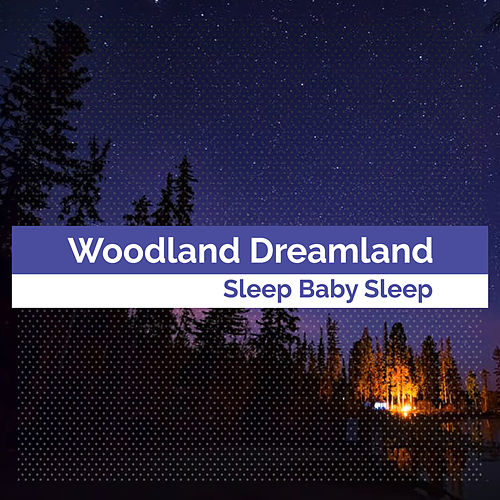 Woodland Dreamland by Baby Sleep Sleep