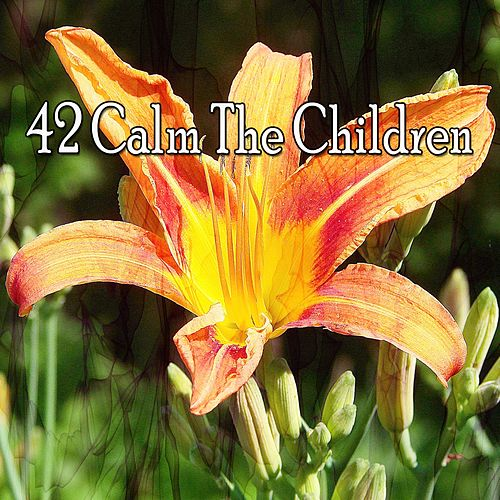 42 Calm the Children by Relaxing Spa Music
