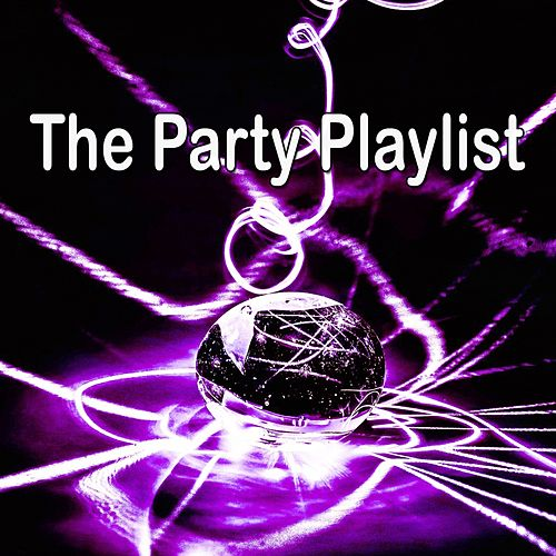The Party Playlist by CDM Project