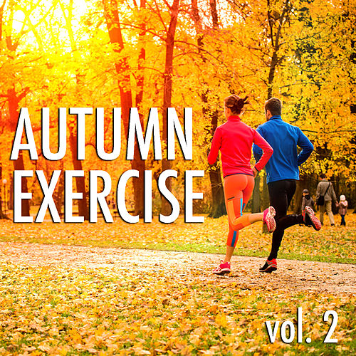 Autumn Exercise vol. 2 by Various Artists