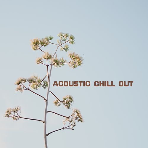 Acoustic Chill Out von Acoustic Chill Out
