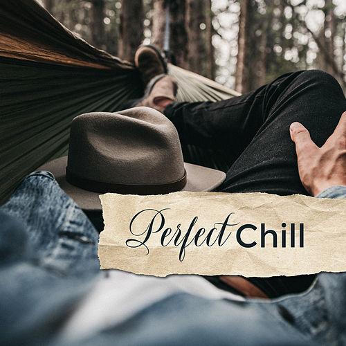 Perfect Chill: Music Zone 2019 de Chill Out