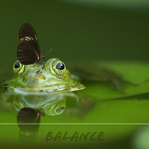 Balance by Nature Sounds (1)