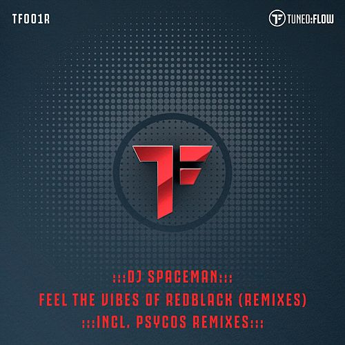 Feel the Vibes of RedBlack (Remixes) by DJ Spaceman