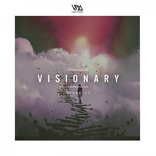 Variety Music Pres. Visionary Issue 17 von Various Artists