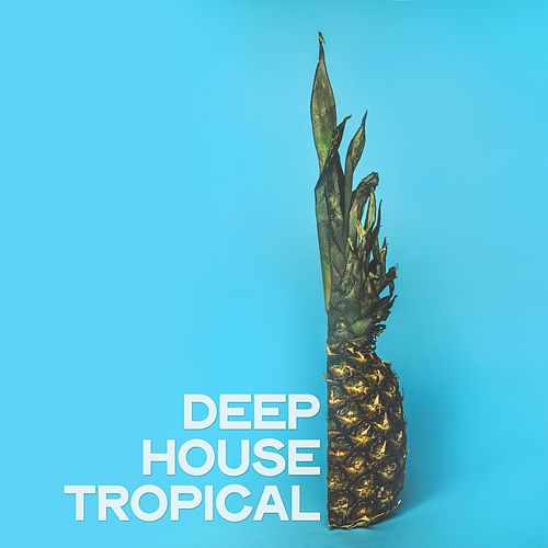 Deep House Tropical (Ibiza Beach Party Music 2020) by Various Artists