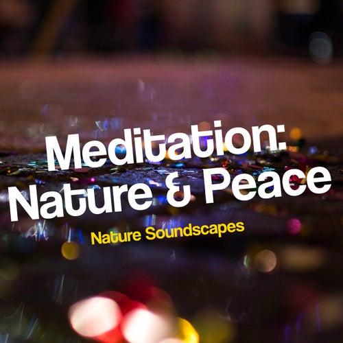 Meditation: Nature & Peace von Nature Soundscapes
