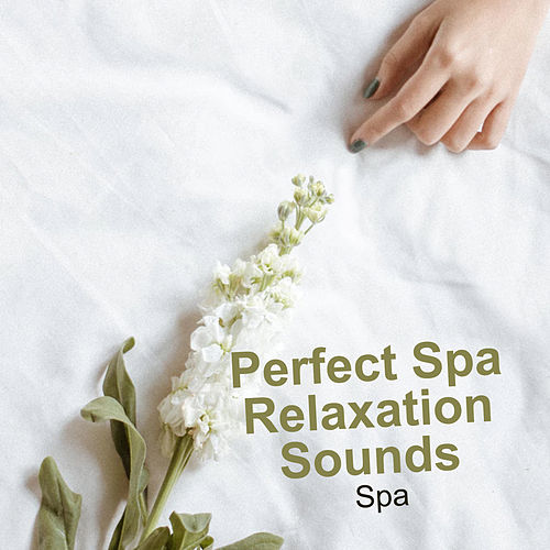 Perfect Spa Relaxation Sounds de S.P.A