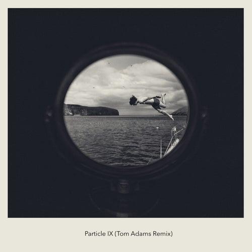 Particle IX (Tom Adams Remix) de Tom Adams