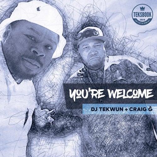 You're Welcome de DJ Tek-Wun
