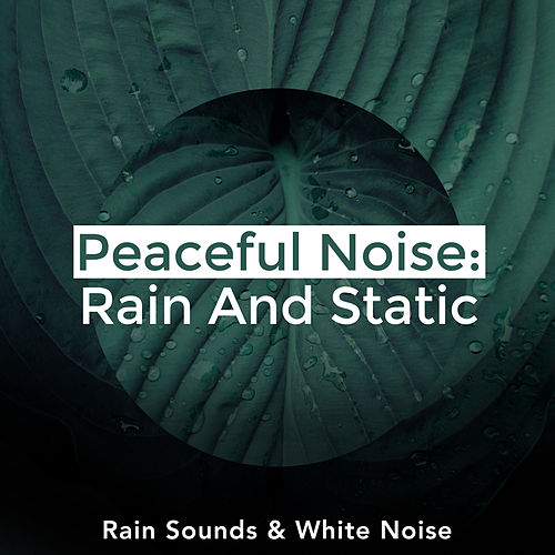 Peaceful Noise: Rain And Static by Rain Sounds and White Noise