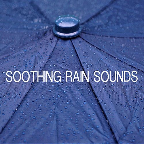 Soothing Rain Sounds by Thunderstorms