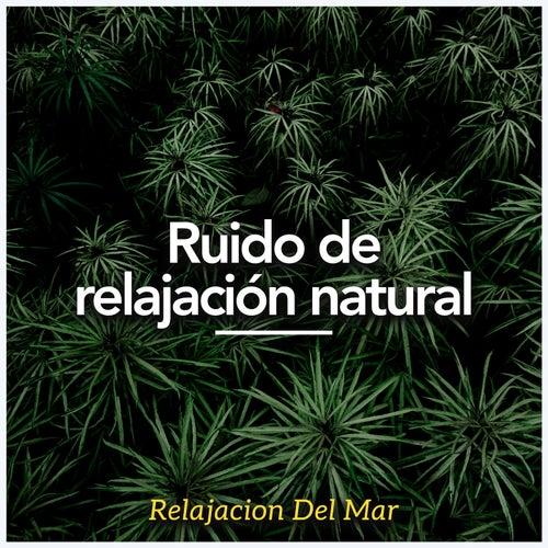 Ruido de relajación natural by Relajacion Del Mar