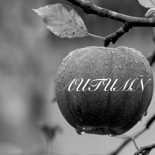 Autumn von Nature Sounds (1)