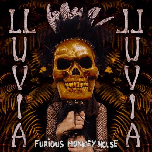 Lluvia by Furious Monkey House