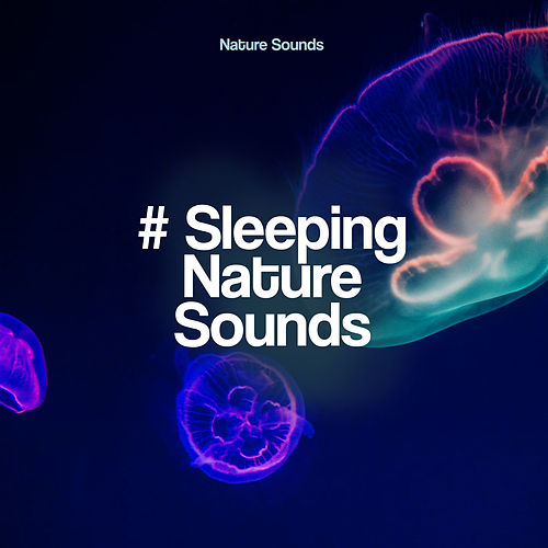 # Sleeping Nature Sounds by Nature Sounds (1)