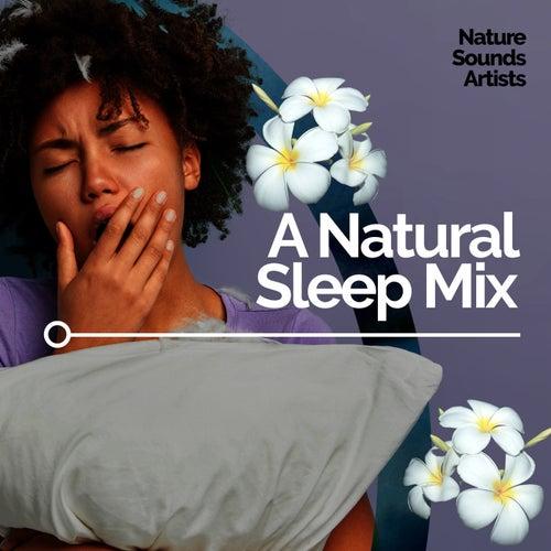 A Natural Sleep Mix de Nature Sounds Artists