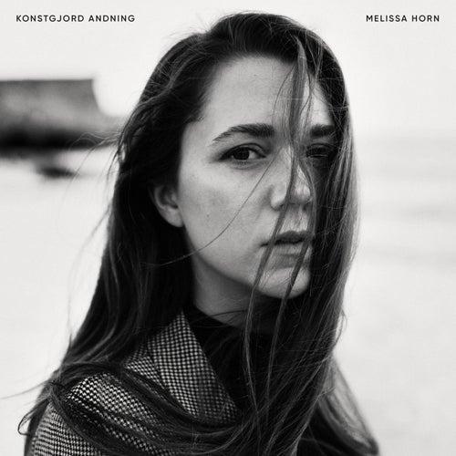 Konstgjord andning by Melissa Horn