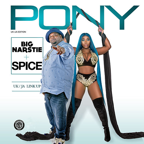 Pony von Big Narstie