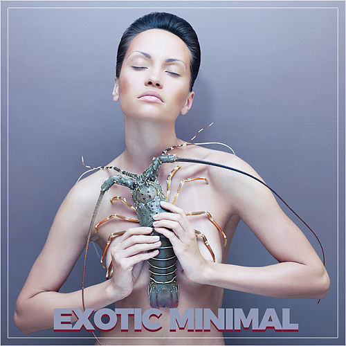 Exotic Minimal by Various Artists