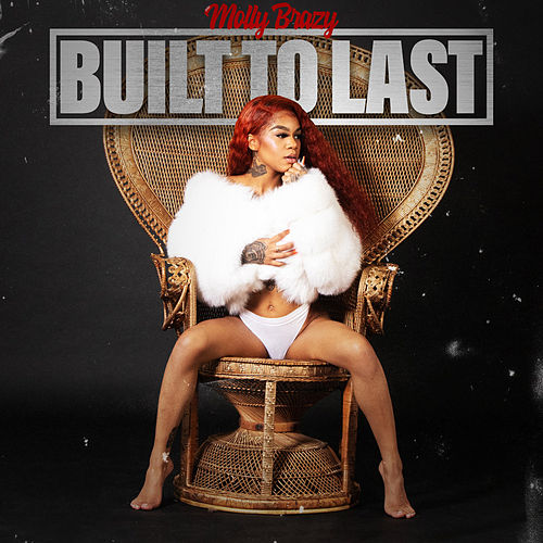 Built To Last de Molly Brazy