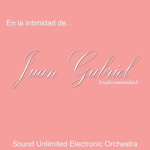 En la Intimidad de...Juan Gabriel (Instrumental) de Sound Unlimited electronic Orchestra