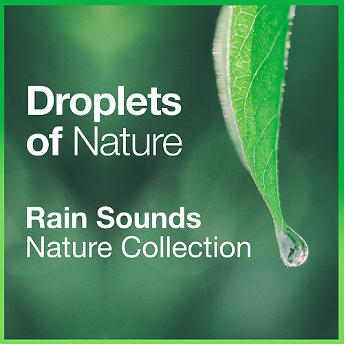 Droplets of Nature by Rain Sounds Nature Collection
