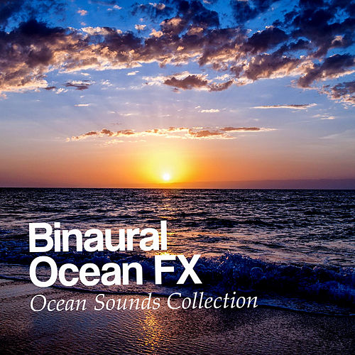 Binaural Ocean FX de Ocean Sounds Collection (1)