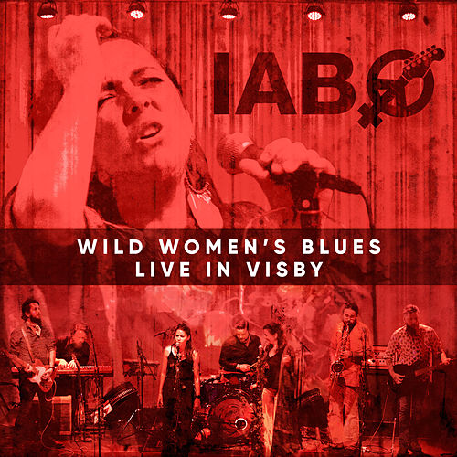 Wild Women's Blues (Live in Visby) by Ida Andersson Band