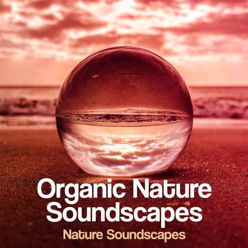 Organic Nature Soundscapes von Nature Soundscapes