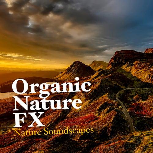 Organic Nature FX von Nature Soundscapes